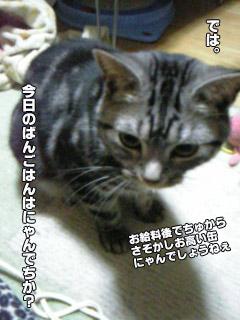 188_2.jpg