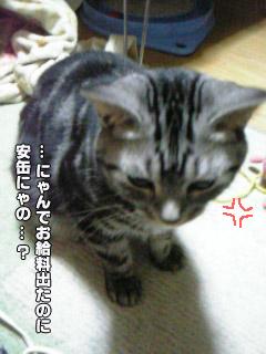 188_4.jpg