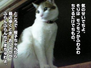 202_4.jpg