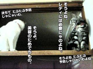 202_7.jpg