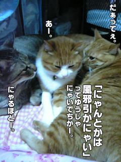 209_4.jpg