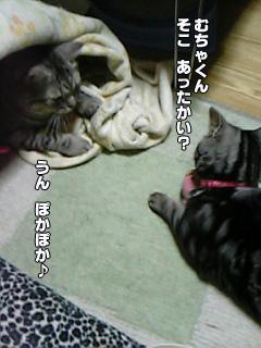210_01.jpg