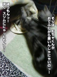 210_04.jpg
