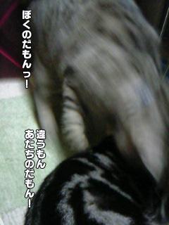 210_11.jpg