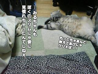 218_6.jpg