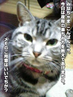 244_01.jpg