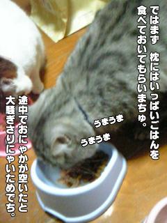 244_05.jpg