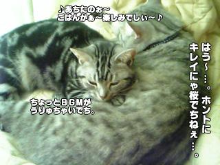 244_09.jpg