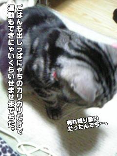 249_03.jpg