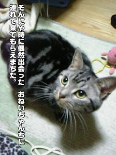 249_04.jpg