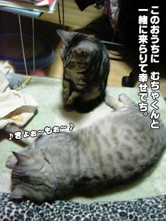 249_05.jpg