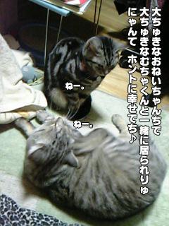 249_06.jpg