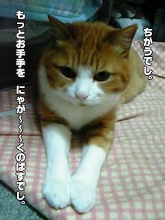 265_07.jpg