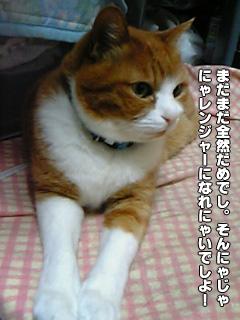 265_09.jpg