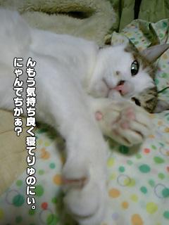 285_09.jpg