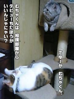 289_4.jpg