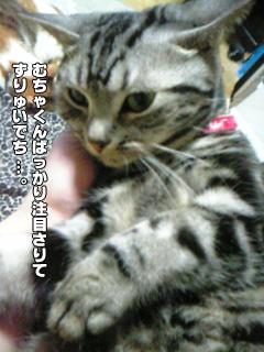 297_5.jpg
