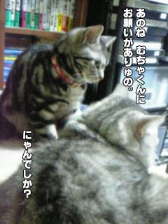 307_01.jpg