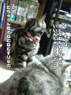 307_06.jpg