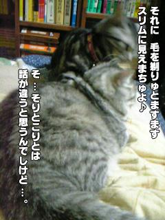 307_07.jpg