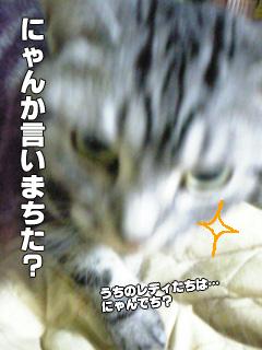 307_09.jpg
