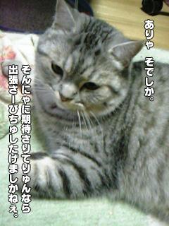 310_01.jpg