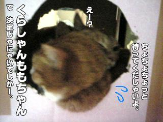 314_6.jpg