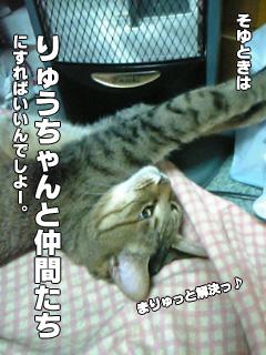315_3.jpg
