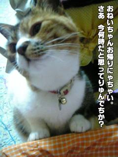321_1.jpg