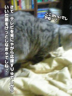 322_3.jpg