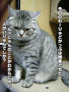 323_01.jpg