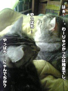 324_1.jpg