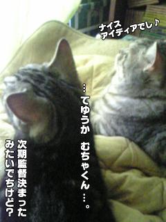 324_3.jpg