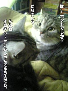 324_4.jpg