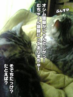 324_6.jpg