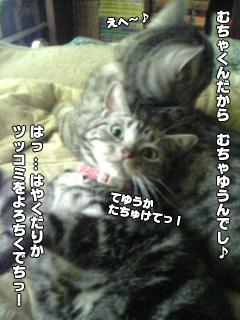 324_9.jpg
