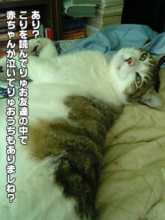 349_01.jpg