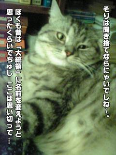 358_3.jpg