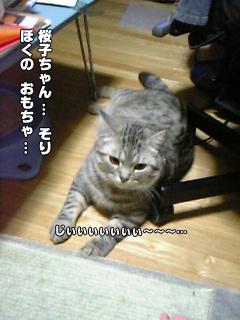 368_7.jpg
