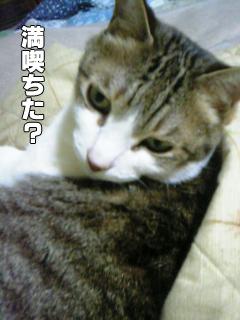 370_14.jpg