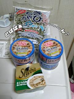 390_1.jpg