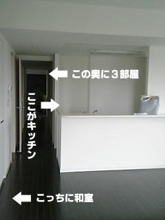 391_2.jpg