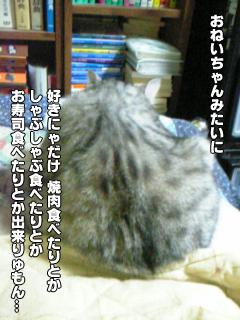396_3.jpg
