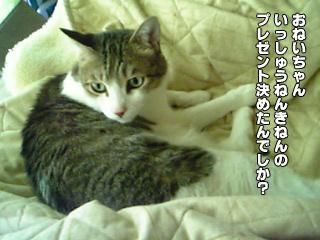 410_1.jpg