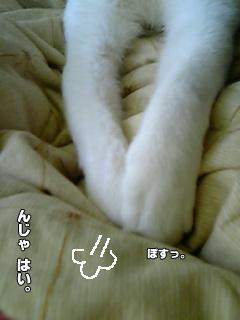 410_4.jpg