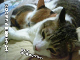 417_2.jpg