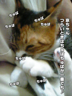 418_2.jpg
