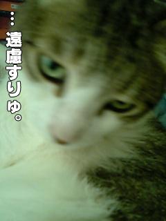 418_3.jpg