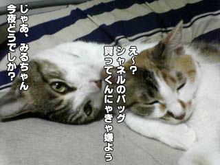 82_3.jpg