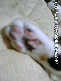 97_1.jpg